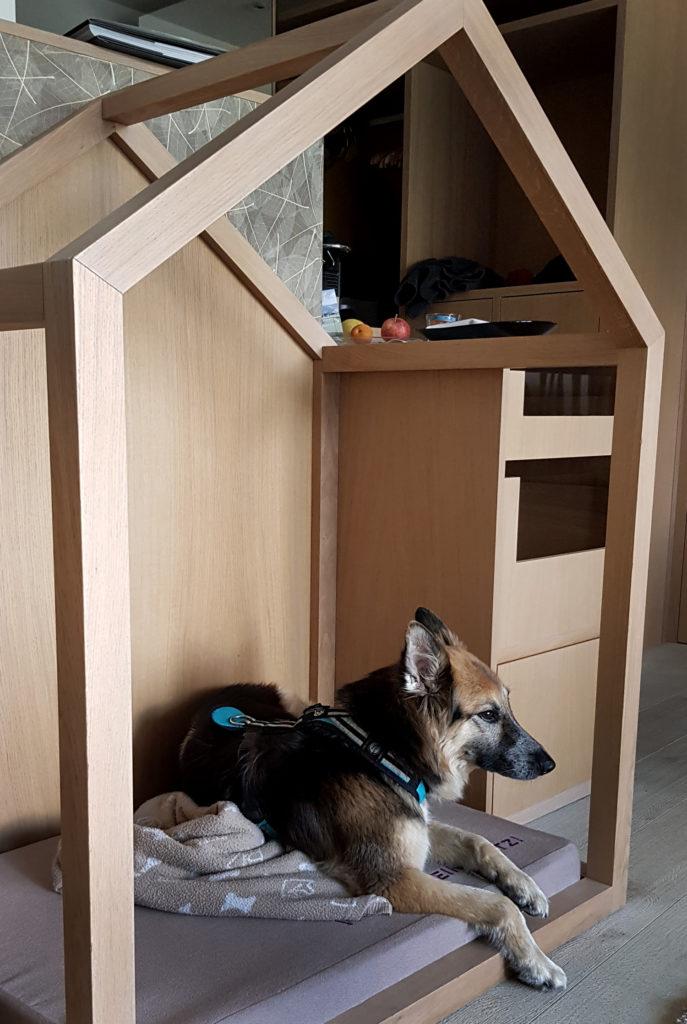 Hundehotel Wasnerin Österreich